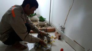 Dịch vụ diệt kiến tại Đà Nẵng